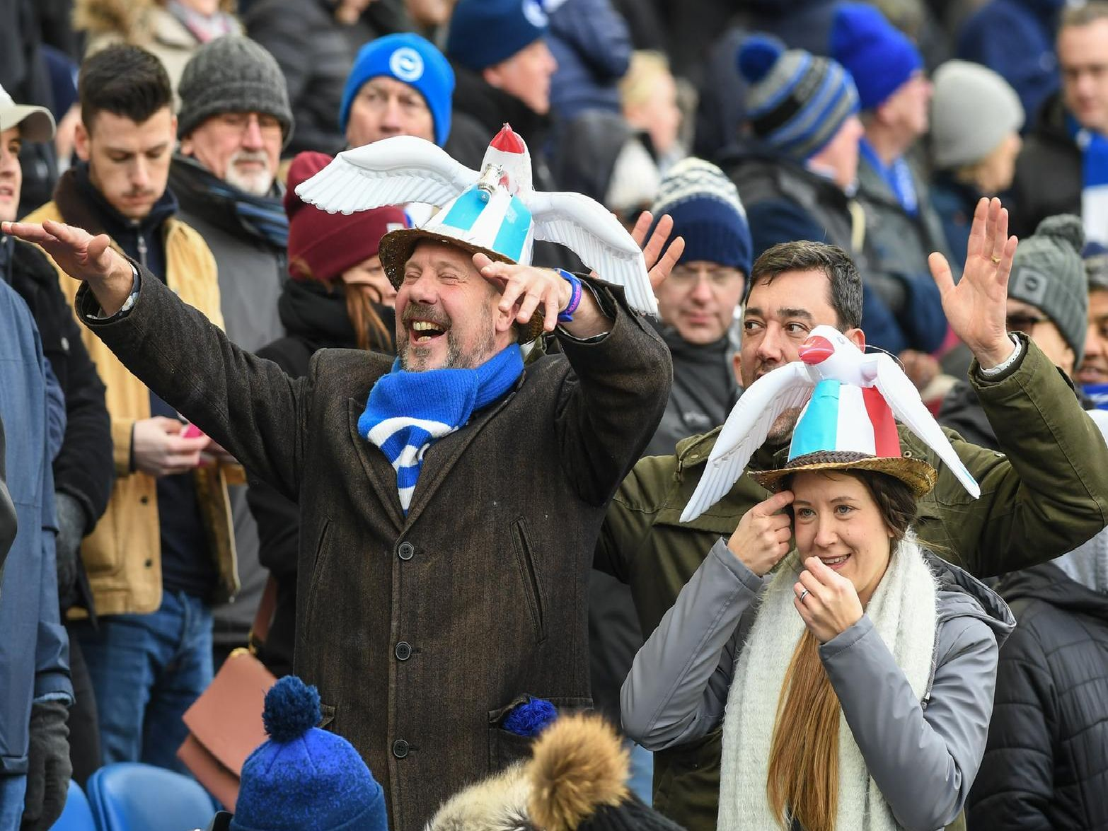 Albion fans pictured at the Amex before the Watford match