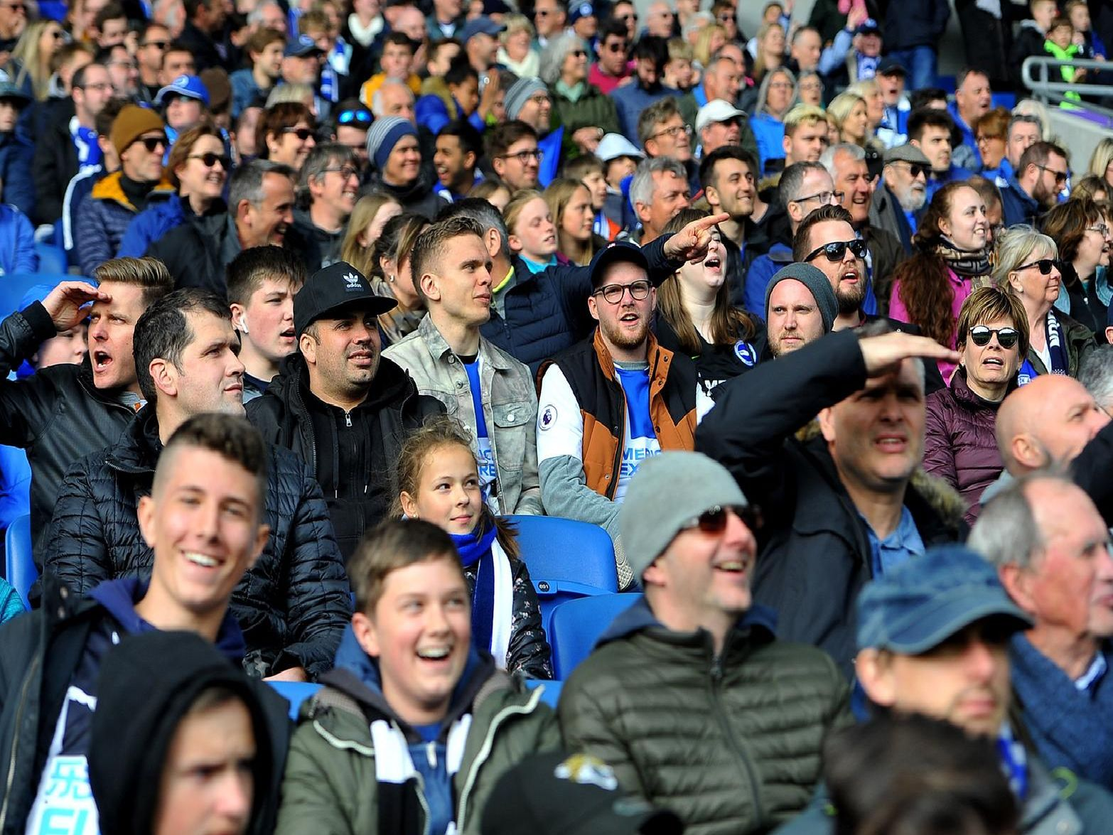Brighton fans pictured at the game