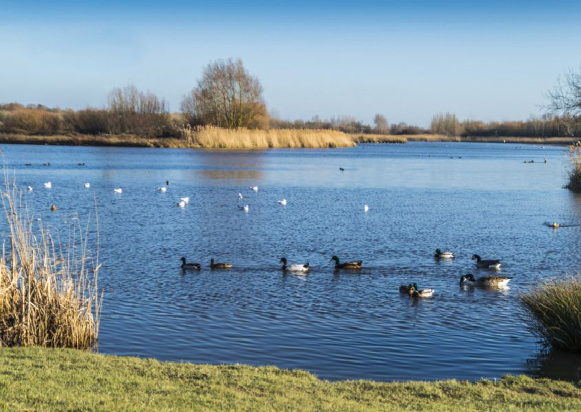"Alastair Ball took this photograph of Shinewater Lake on a sunny day with a Nikon D3200. He said, ""Had a walk round Shinewater Lake for the first time and saw this lovely spot. Thought it was worth a photograph."" SUS-190803-104339001"