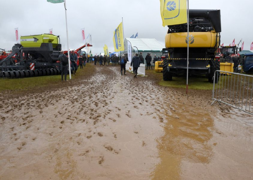Cereals 2019 at Boothby Graffoe. EMN-190613-091415001 EMN-190613-091415001