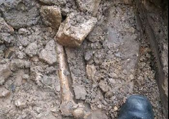 Ancient human bones were discovered by builders in Newtownards