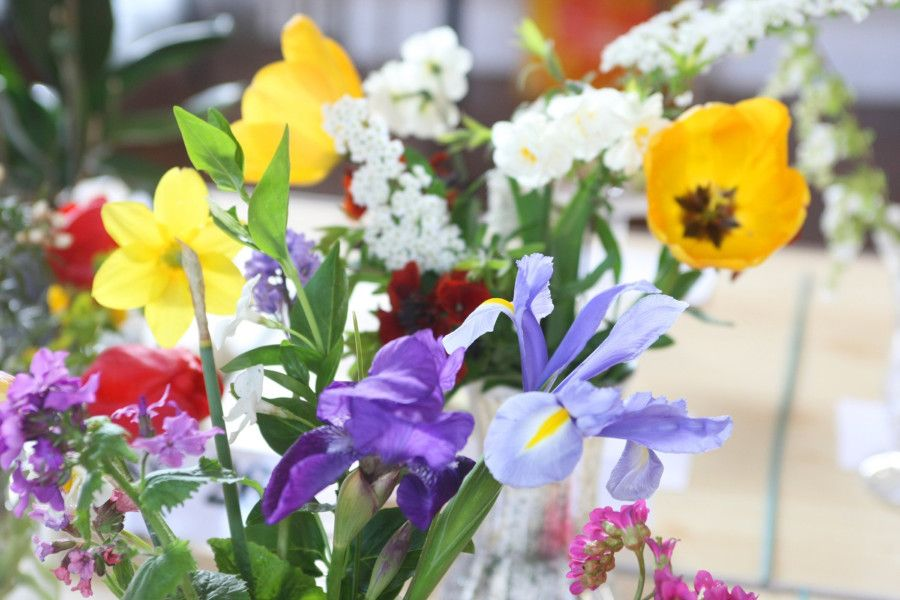 East Preston and Kingston Horticultural Society's spring show. Photo by Derek Martin DM1941072a