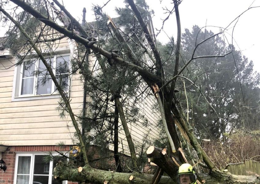 A tree has fallen onto a house in Horsham