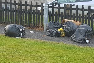 Rubbish bags lying at the lower end of Hamilton Park.
