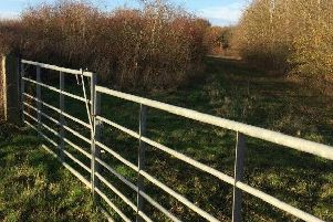 The old garden nurseries site on the A428 near Bromham is the site earmarked for development