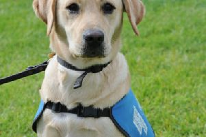 Sue Tubbs and Guide Dog puppy Sparky from Whittlesey. EMN-170918-163718009