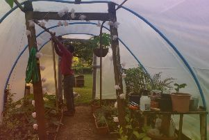 Culture Kitchen's members have free use of Amy Stoddard and Femi Ajayi's vegetable garden