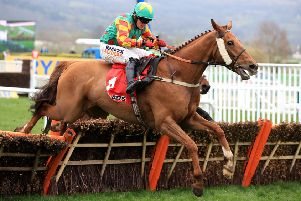 Lil Rockerfeller during the Sun Bets Stayers' Hurdle at the Cheltenham Festival last season. Picture: PA Images