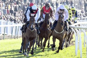 Fontwell Park hosts seven races on Tuesday afternoon / Picture by Malcolm Wells