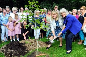 Jane Probitts, NFWI Trustee,  front right, and Lisa Emmerson, president of the Singleton and East Dean WI, which was one of the first groups, planting a tree at the Weald and Downland to celebrate the centenary in 2015.ks1500436-1