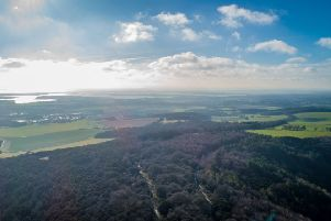 An aerial view of Kingley Vale. Picture: Angus Peel, ProAction Creative