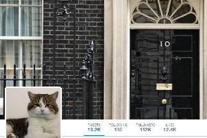 10 of the funniest Twitter accounts on the General Election