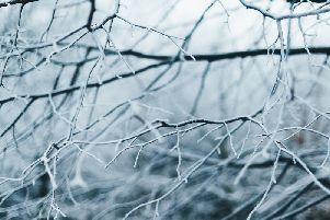 Cold snap on the way