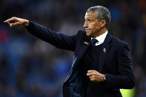 Chris Hughton. Picture by Getty Images