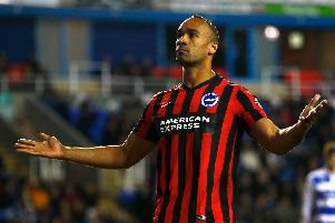Chris O'Grady celebrates scoring for Brighton. Picture by Getty Images