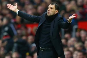 Gus Poyet. Picture by Getty Images
