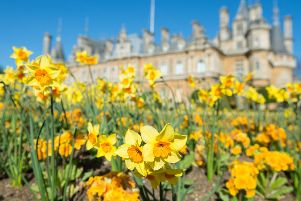 10 things to do with or without the family at Waddesdon Manor this Easter