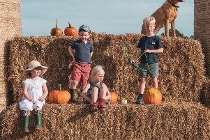 The Gurney children and friends at the pumpkin patch