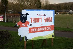 Next weekend will be the last chance for families to visit the animals at Thrift Farm - before they take their usual winter break.