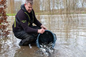 The Environment Agency released thousands of fish into the River Great Ouse as part of a restocking exercise