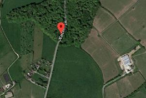 Thames Valley Police said a man took her by the arm into woods near Watchet Lane and raped her.