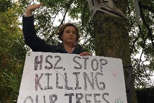 Protesters took to the trees to make their voices heard