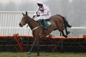 Two Swallows and Nico de Boinville on their way to victory at Towcester last season