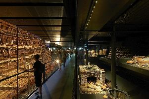 Take a behind-the-scenes look at the Mary Rose. Picture: Mary Rose/ Hufton+C