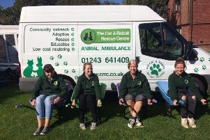 Cat and Rabbit Rescue volunteers with the donated wheelbarrows