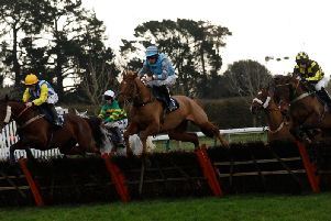 Action at Fontwell Park / Picture by Clive Bennett