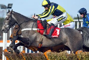 Up close at Sandown Park / Picture by Malcolm Wells