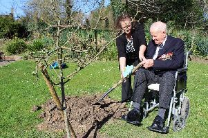 Special guest helps plant trees to mark Commonwealth Day