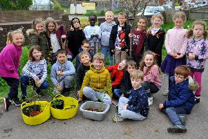Portfield Primary Academy Hedgrow Planting - Year 3. Pic Steve Robards SR1908994 SUS-190804-104048001