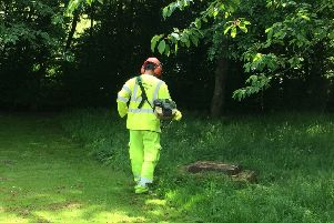Grass cutting in West Sussex