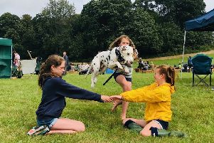 Monty the Dalmation, with Milly, Maddy and Alice