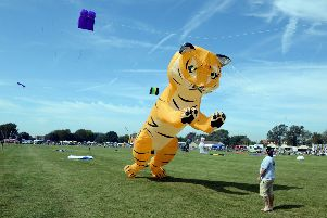 A giant tiger kite       ks190477-2