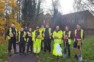 Crawley Borough Council and Squire's have planted thousands of tulip bulbs