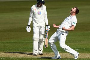 Ollie Robinson celebrates the wicket of Gareth Harte / Picture by Getty Images