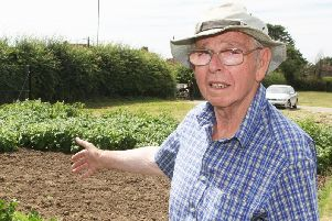 Bill Mason pointing at his missing crops at the allotments in Worthing Road, Littlehampton