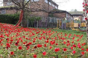 DM19111640a.jpg. Broadfield (Crawley) poppy memorial vandalism outside the Church of Christ the Lord. Photo by Derek Martin Photography.
