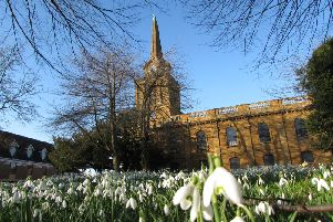 This photo of snowdrops in Daventry Holy Cross churchyard was taken earlier this month by Phil Pratt.