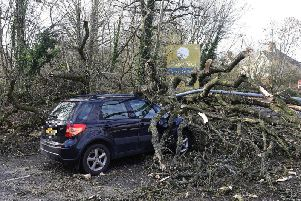 A tree is brought down on top of a car by Storm Erik in the North of Ireland last month. (Photo: Pacemaker)