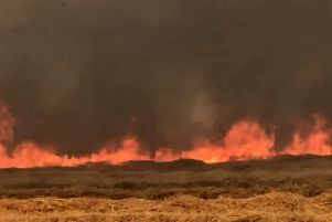 This is the moment a wildfire engulfed Buckinghamshire fields.