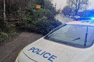 Fallen tree in London Road. Photo by Central Bedfordshire Community Police Team