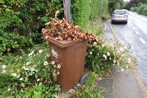 Garden waste bin awaiting emptying near Carters Corner in the Wealden District Council area. September 9th 2013 E37176P SUS-140320-092549001