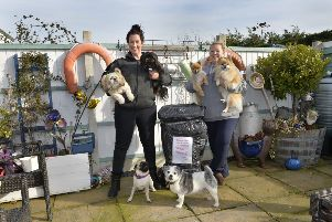 Sammie and Sue with their dogs in Mountney Drive, Pevensey Bay (Photo by Jon Rigby)