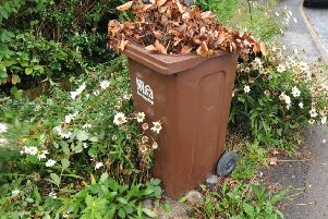 One of the most contentious parts of the budget is the introduction of a charge on green waste bins