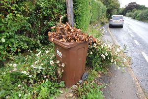Garden waste collection suspended over Christmas break