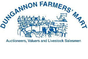 Steers sell to £1315 at Dungannon