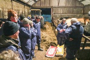 North Tyrone Business Development Group farmers discuss the use of minerals pre calving.